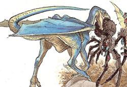 Condor-dragon