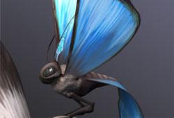 Papillon voyageur