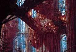 Endor - Village de Bright Tree