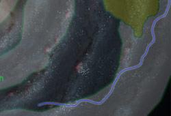 Route commerciale de Triellus