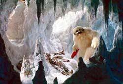 Hoth - Grotte du Wampa