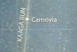 Carnovia