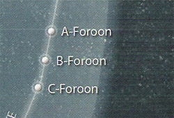 C-Foroon